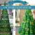 Unechte Weihnachtsbäume-700