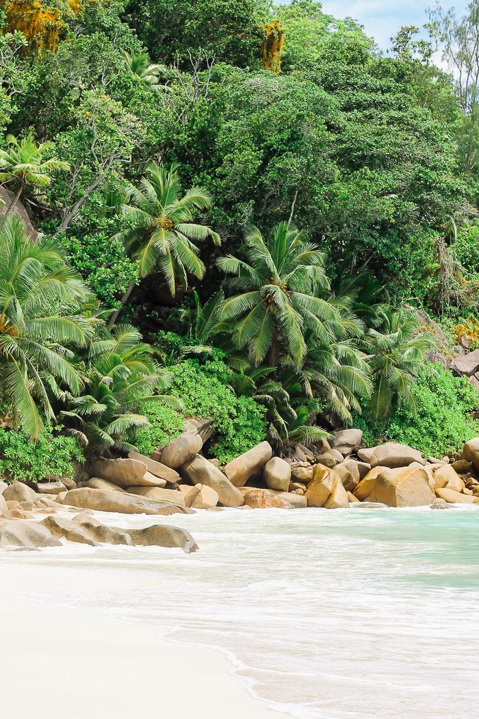 seychellen strand anse