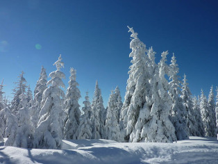 Schneeschlaf_Winterlandschaft