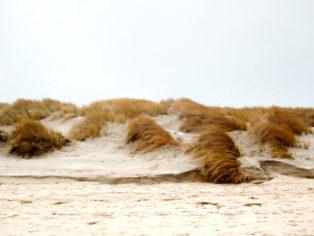 Wandern auf Baltrum-Strand Dünen