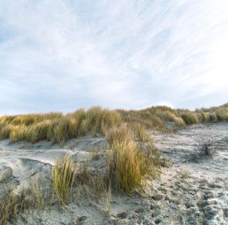 Juist – die Heimat für meine Seele
