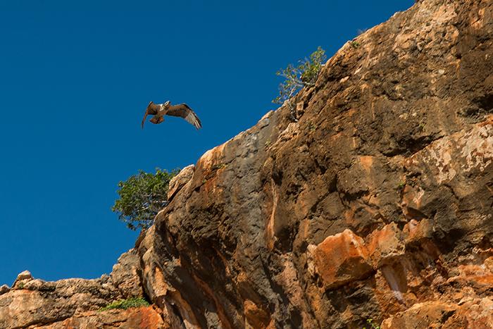 Entdecke Westaustralien