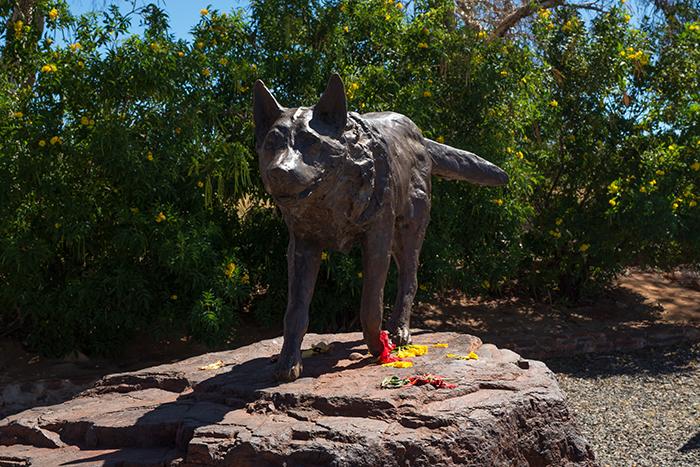laura-drosse-pilbara-wanderer-red-dog