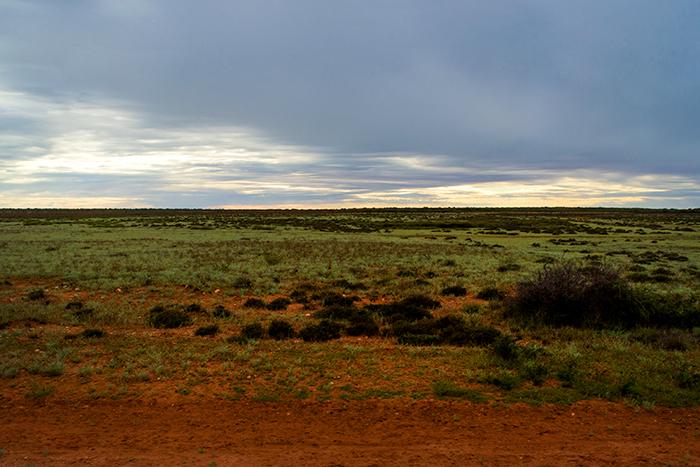 laura-drosse-westaustralien-rote-erde