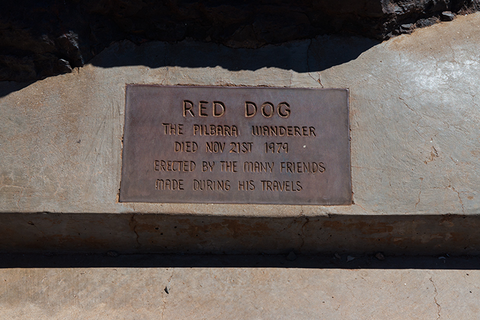 westaustralien-red-dog-pilbara-wanderer