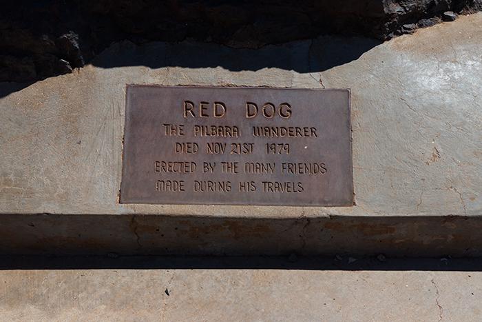 westaustralien-red-dog-pilbara-wanderer