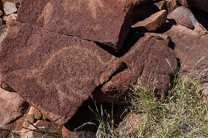 petroglyphen-westaustralien-