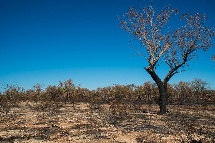 westaustralien-indigenous-fruchtbarkeitsstätte