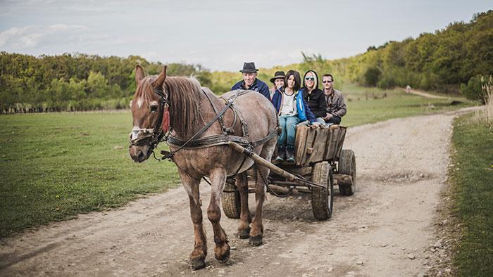 Kutschfahrt in Rumänien