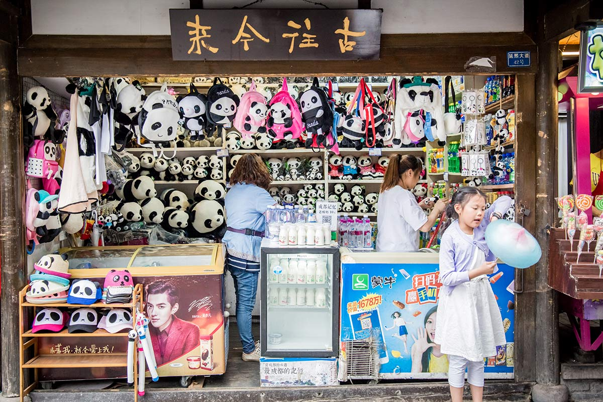 Der Riesenpanda ist Sichuans Nationaltier