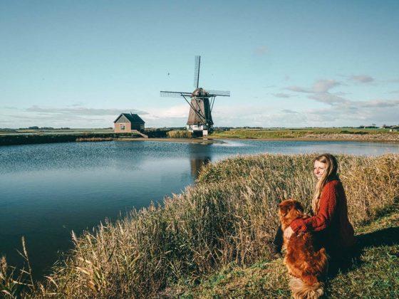 DIe Insel Texel