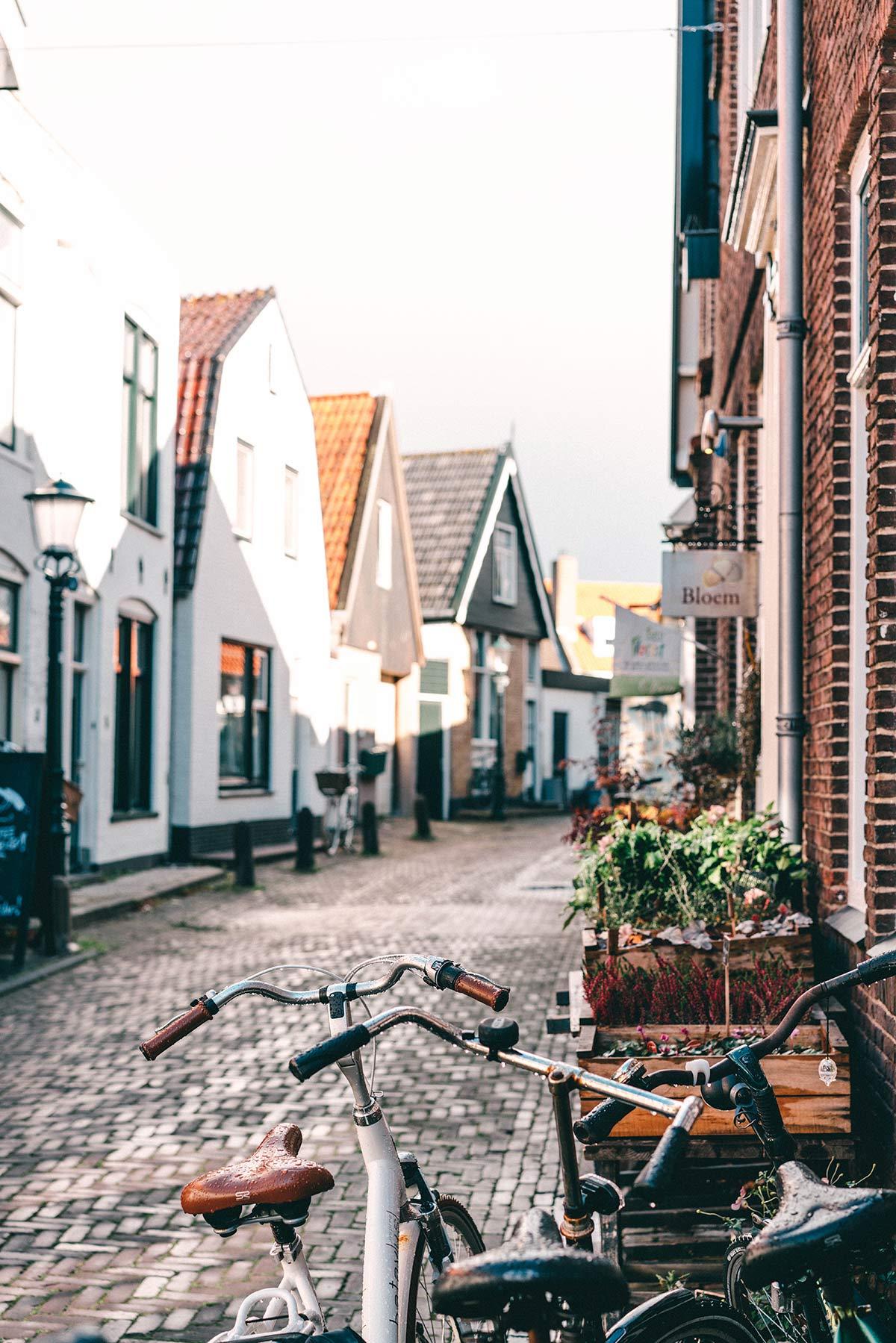 Texel den Burg