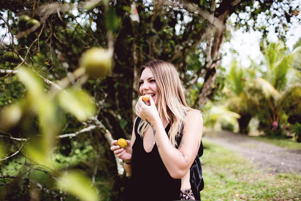 Orangen im Garten von Lakau A