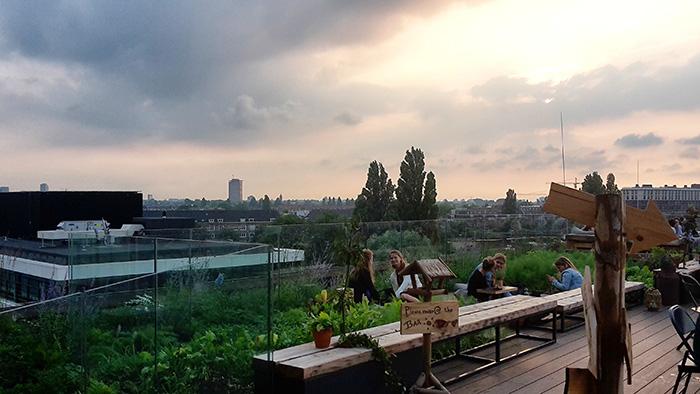 rooftopbar amsterdam nest