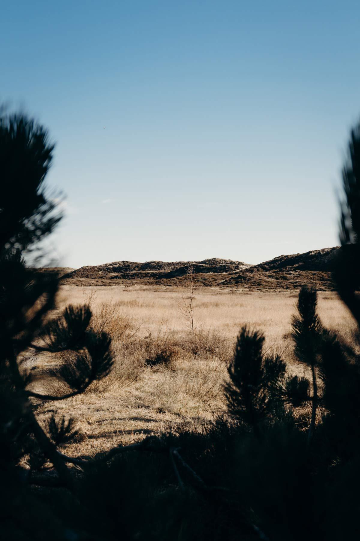 Landschaft Fanoe