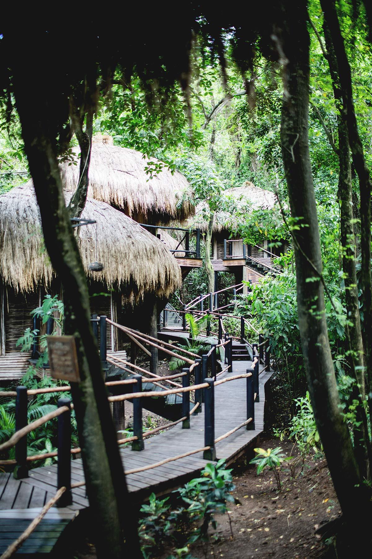 Spabereich im Regenwald