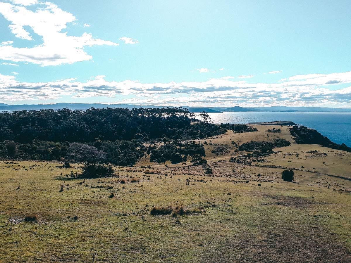 Hobart Tasmanien Roadtrip