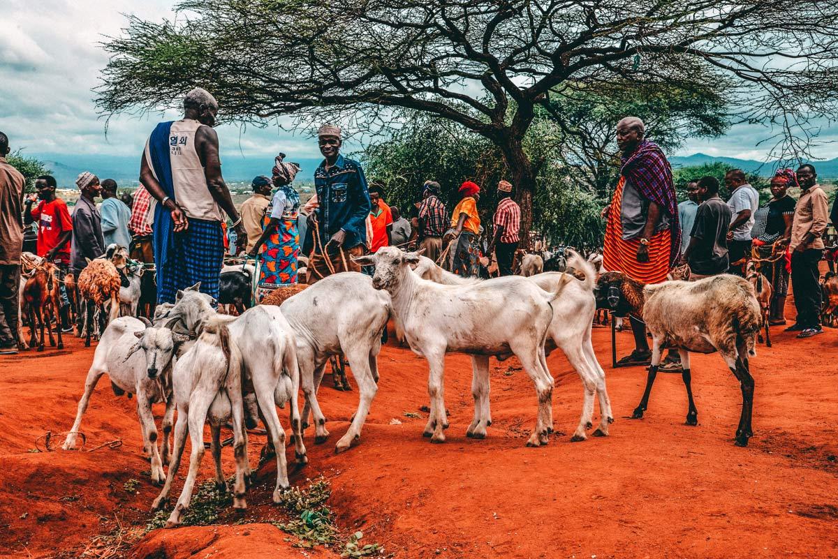 Massai Kultur