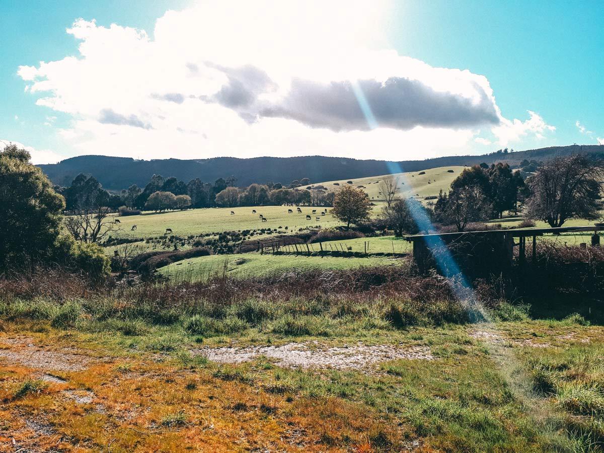 Nordosten Tasmaniens