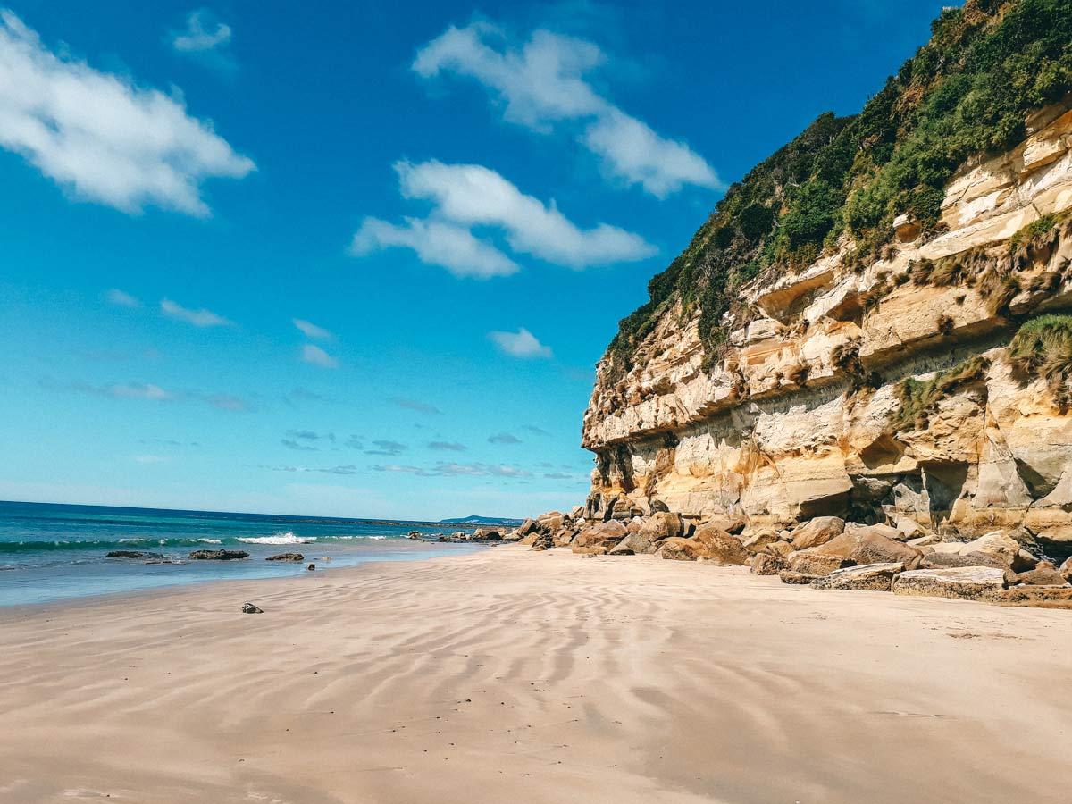 Nordwesten Tasmanien Roadtrip