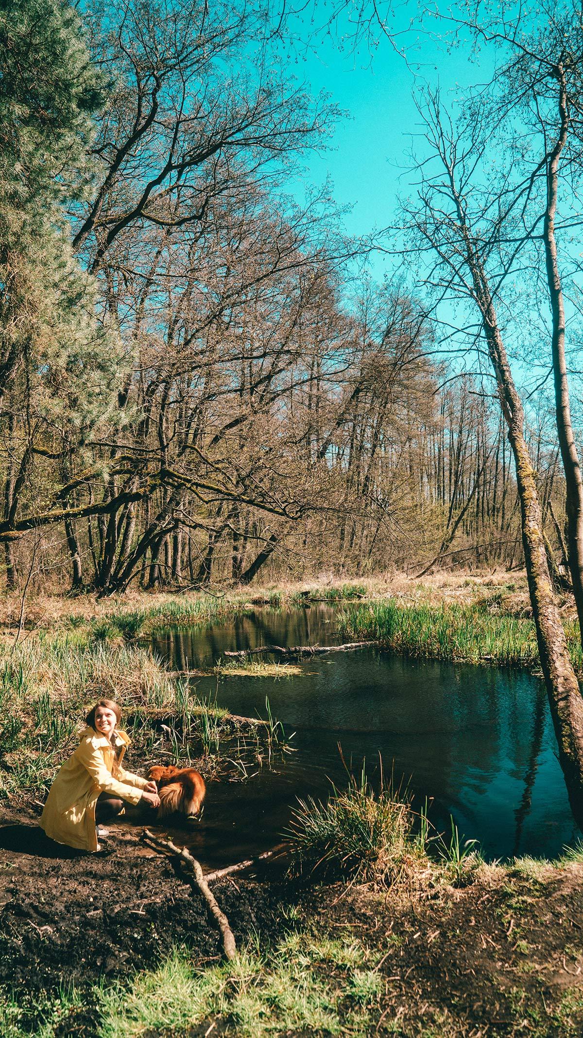 See im Loecknitztal