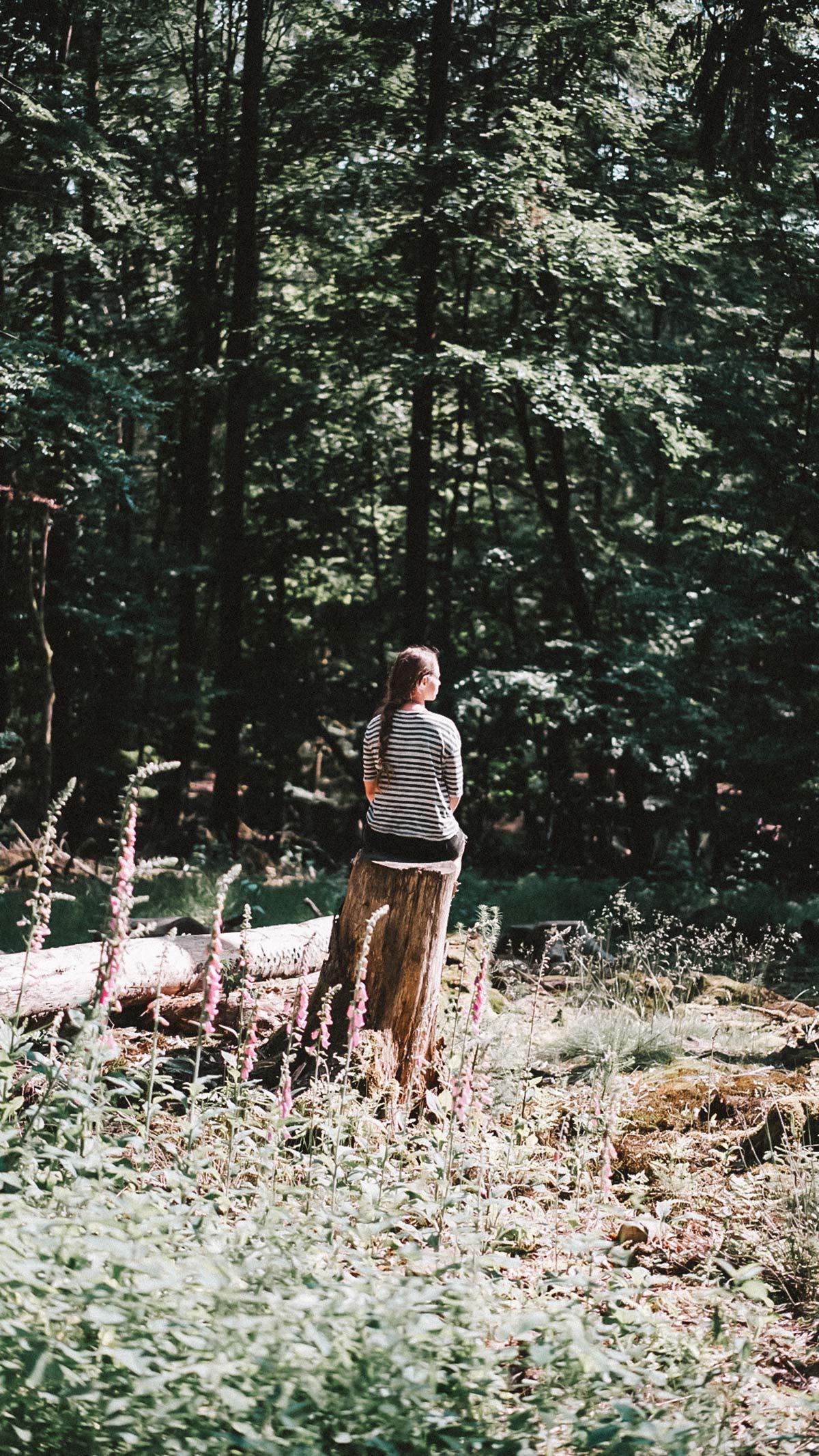 Christine Neder Wald