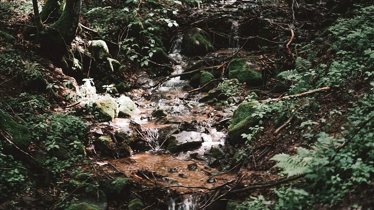 Kaskadenschlucht Wasser