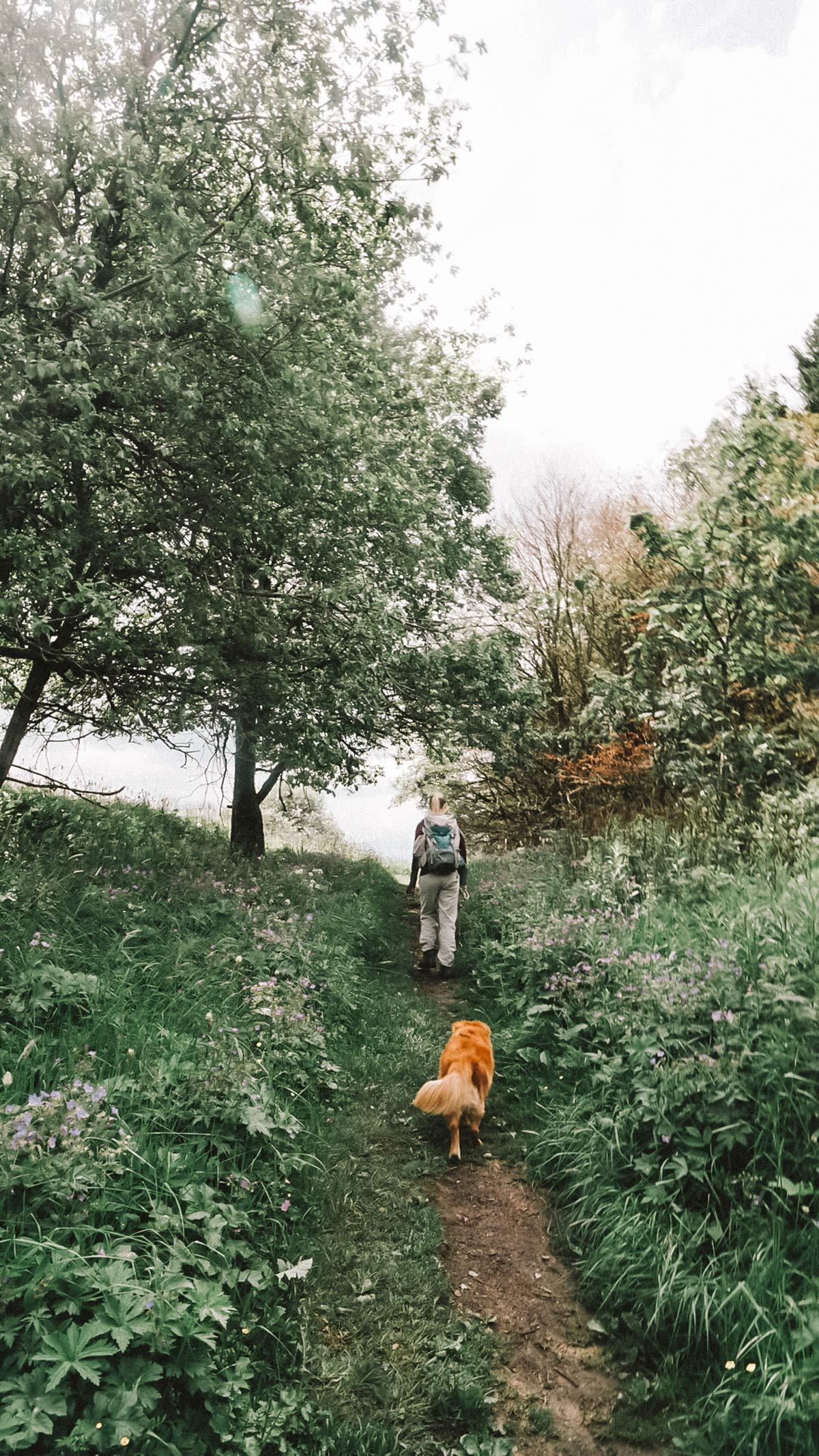 Wandern rhoen
