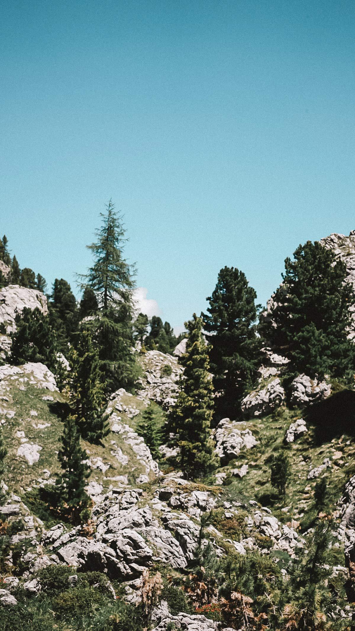 suedtirol landschaft