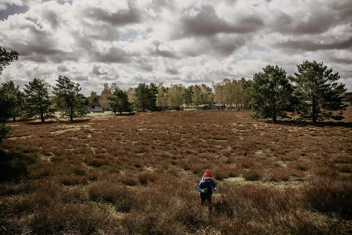 Nemitzer Heide Ausflugsziele Wendland