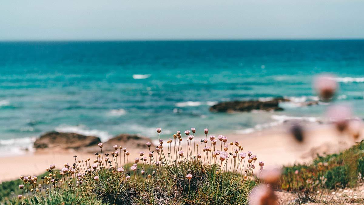 Aussicht Praia do Malhao